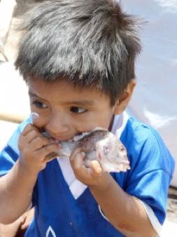 Pablo, enfant du village la Tortuga à Piura au Pérou